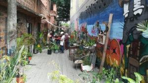 En Pedregal crece un Jardín Con-Sentido - noticias